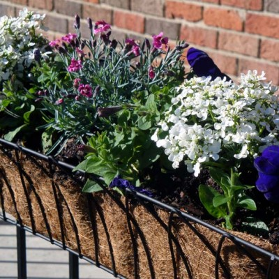 Simple Flower Boxes