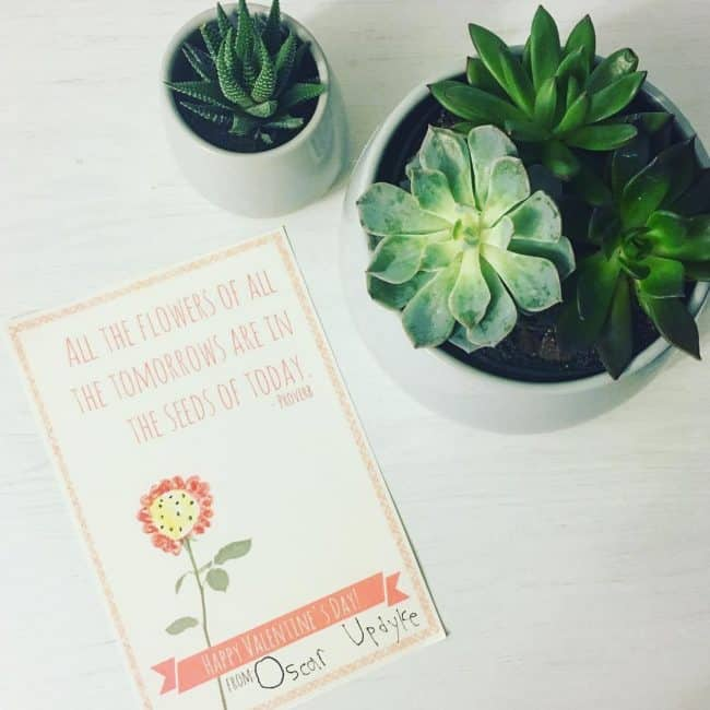 Easy Teacher Valentines Free Printable Cards For Teacher Gifts