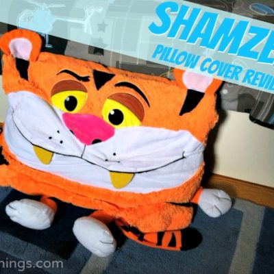 Shamzees pillow cover {review}