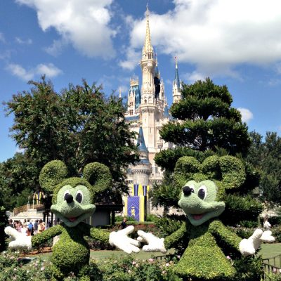 The Disney Difference: Seeing is Believing