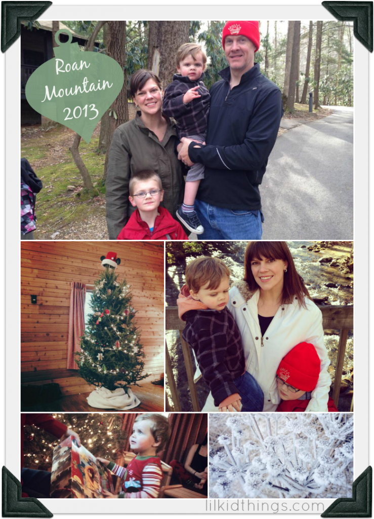 year in review, resolutions, andrea updyke, lilkidthings