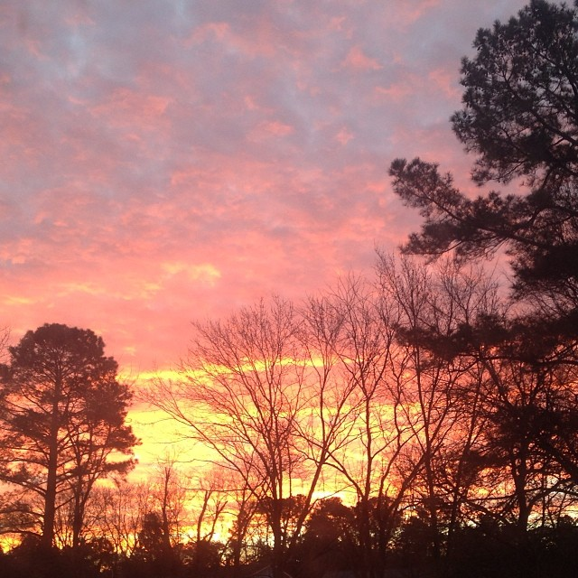 raleigh sunrise, 2014 goals, andrea updyke, lilkidthings