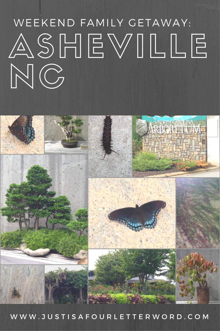 Asheville NC is great for a family weekend getaway enjoying nature, and great food!