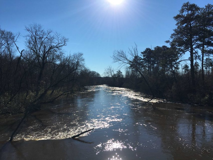Raleigh, Greenway, Neuse RIver Trail