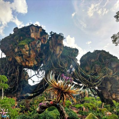 Top 5 Spots to Feed a Baby in Pandora – The World of AVATAR