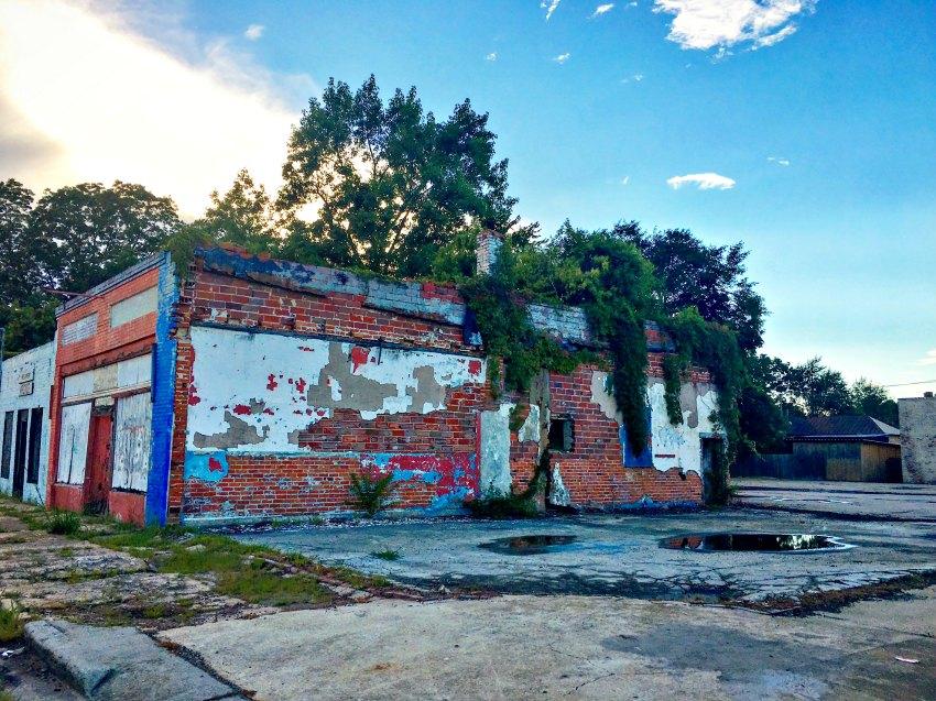 Old Building Ivy