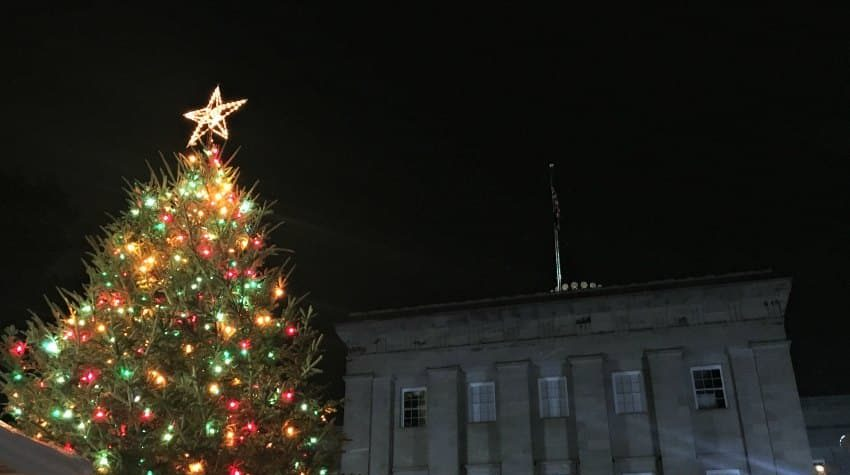 Raleigh Capitol Tree