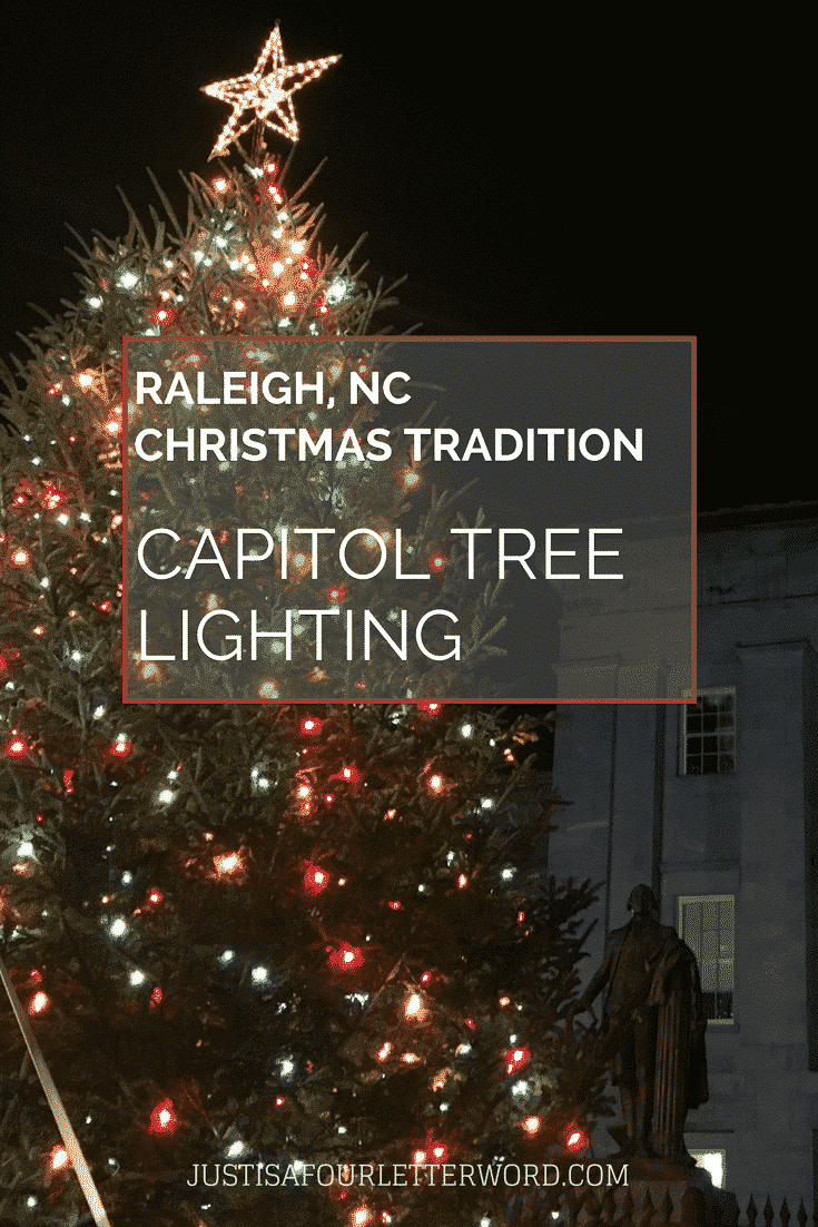 Underneath Capitol Holiday Tree One >> Raleigh Capitol Tree Lightning: A Must-Do Local Tradition