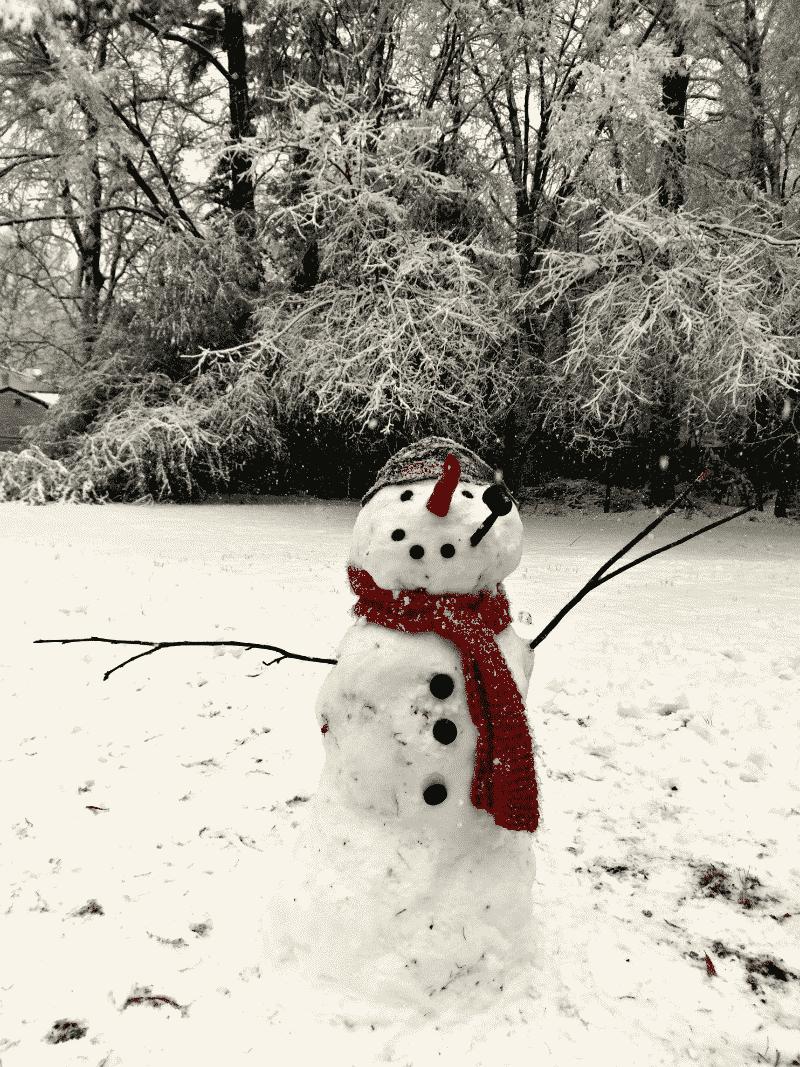 Snowday Snowman