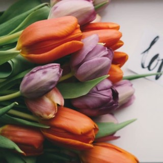 tulip bouquet with the word love