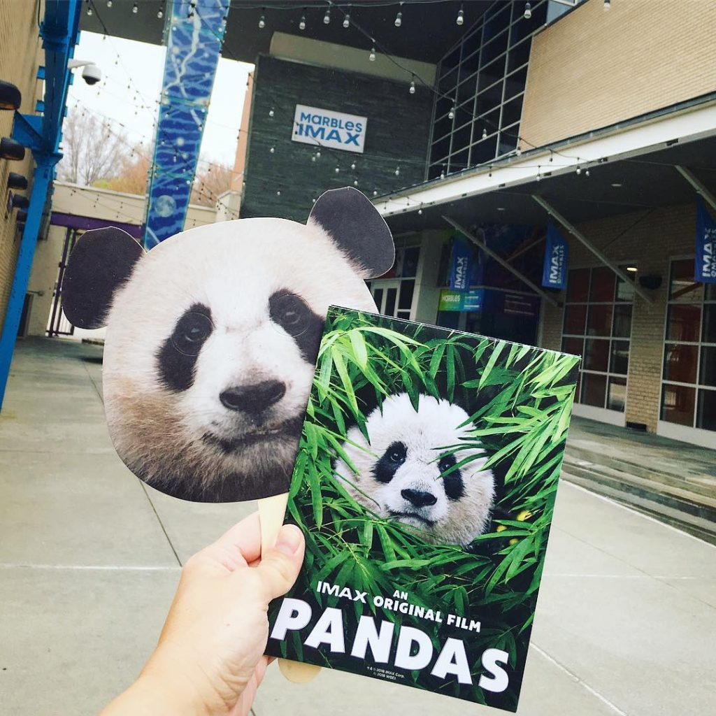 Pandas 3D at Marbles IMAX Raleigh NC