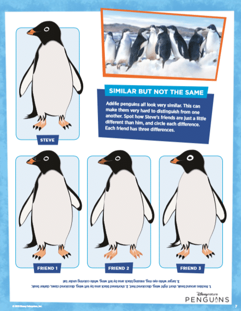 Penguins Activity Pack