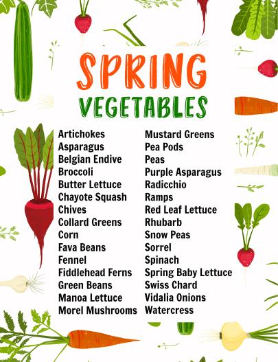 Spring Vegetables printable list