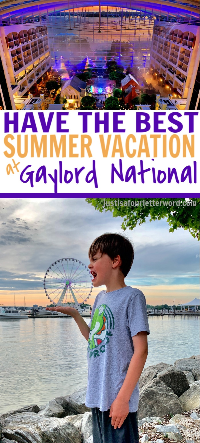 SUMMER VACATION AT GAYLORD NATIONAL PIN IMAGE