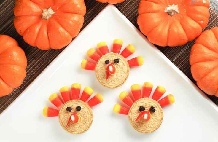 Kids Recipe: Crazy Easy Thanksgiving Turkey Cookie