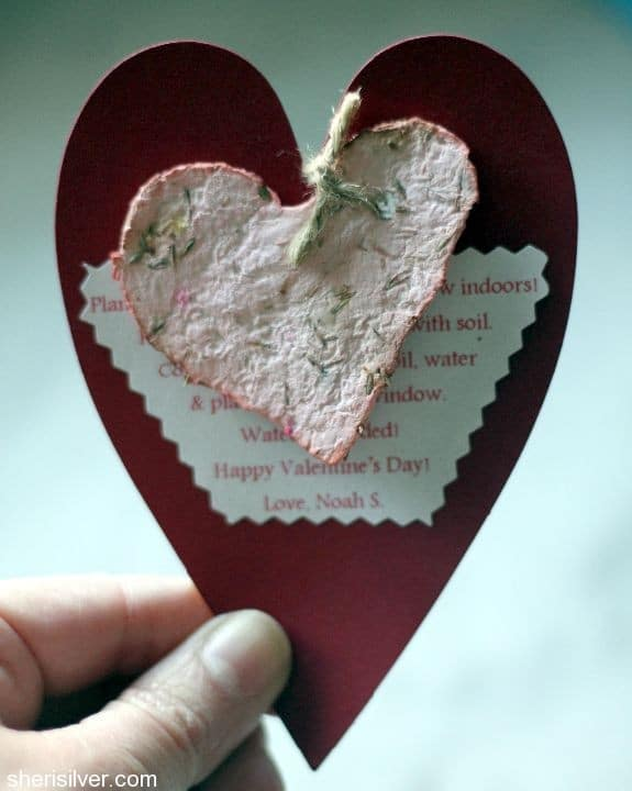 Seed Paper Valentines