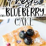 Fresh Blueberry Cake Recipe