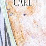 Maine Blueberry Cake Alternate