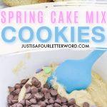 SPRING CAKE MIX COOKIES (1)