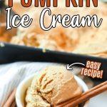 pumpkin ice cream scoop with cinnamon
